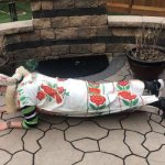 Rosi Magosi! Cinco De Mayo Planks!